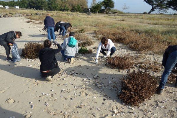 Collecte de déchets XXL – Sur les plages des Moutiers en Retz