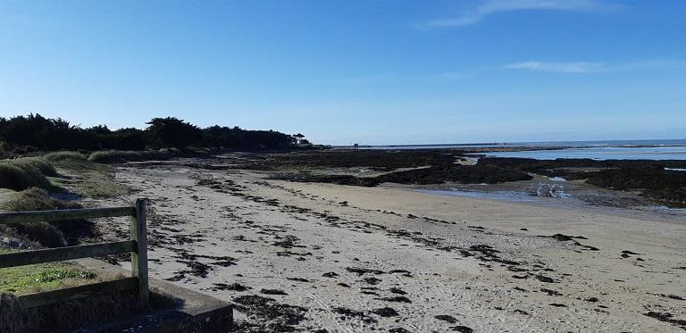 Collecte de déchets – Préfailles / La Plaine sur Mer