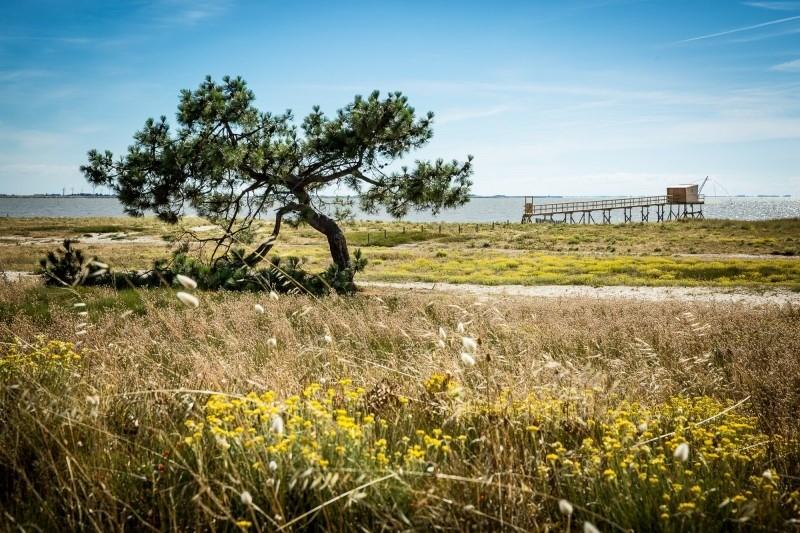 Sortie nature : La dune du Collet
